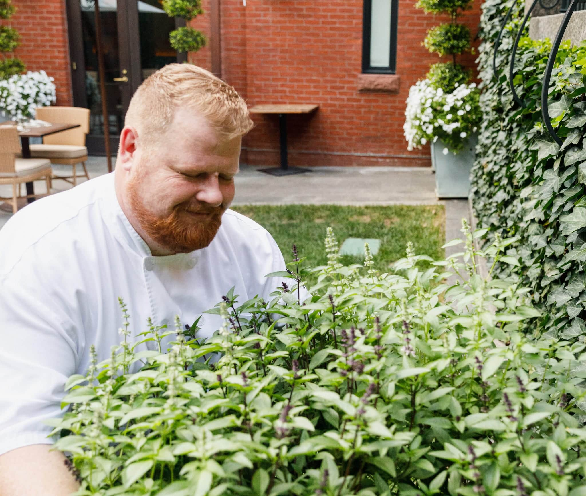 Magdalena Baltimore's Chef Mark Levy choosing garden herbs